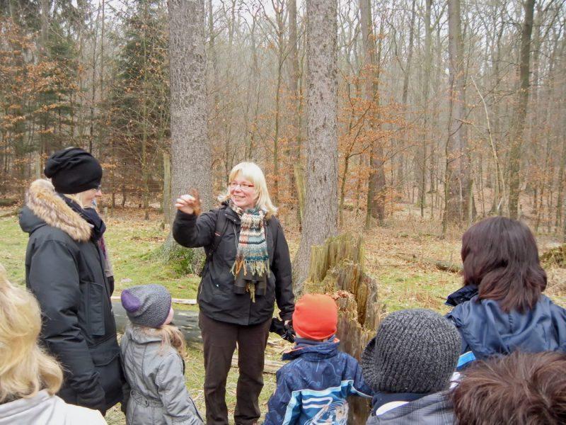 Randonnée dans le bois de Wildwald Vosswinkel