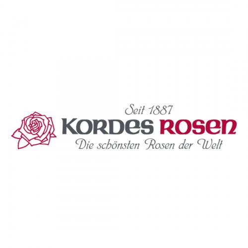Logo Kordes Rosen